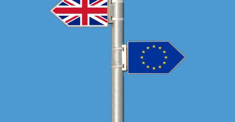 interim-hub-brexit-britain-what-has-actually-happened-so-far