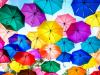 interim-hub-competex-umbrella-begins-trading-specialist-umbrella-company-interim-managers